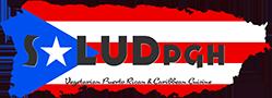 Salud Logo | Custom Logo Design | E'finit Media San Antonio